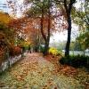 Осень в Варне